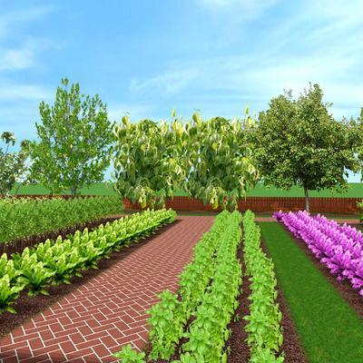 coltivazioni-e-frutteto